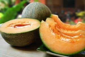 sliced fresh cantaloupe