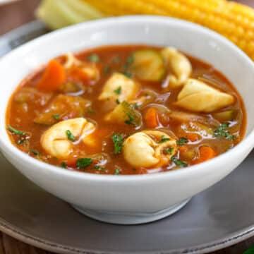 Fresh tomato soup with tortellini or ravioli
