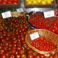Tomatoes in Paris Market