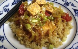 simmered tofu with leeks and tomatoes