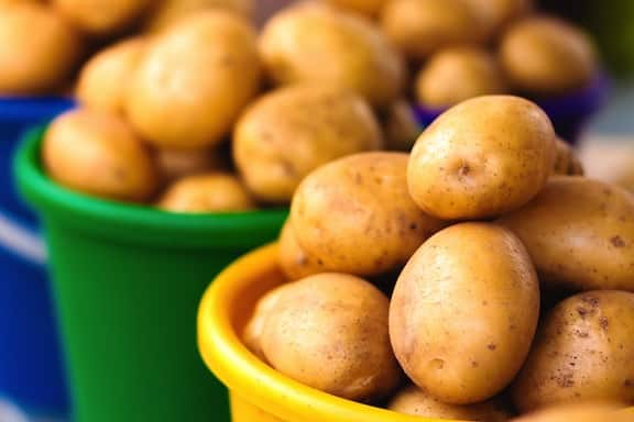 Potatoes in baskets at farmer's market