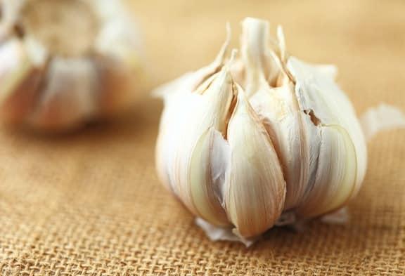 5 Top Health Benefits of Garlic | VegKitchen com