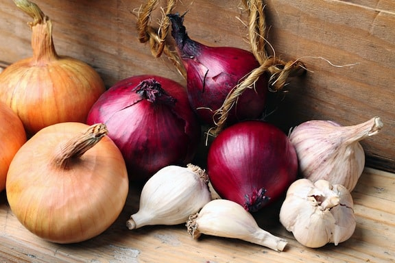 Onion and garlic varieties