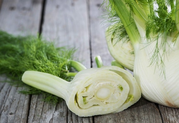 Fennel bulbs