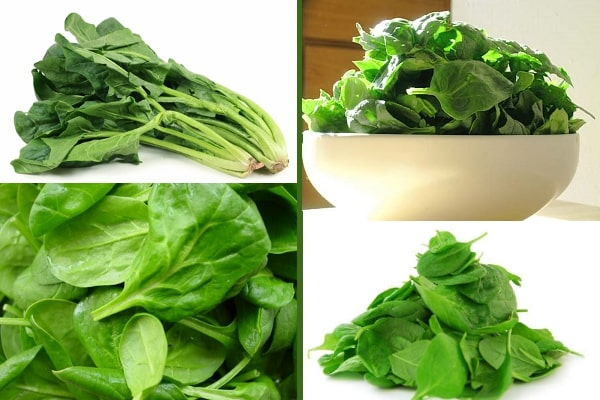 spinach photos
