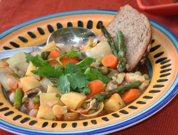 Spanish vegetable stew cropped
