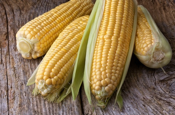 Fresh corn on table