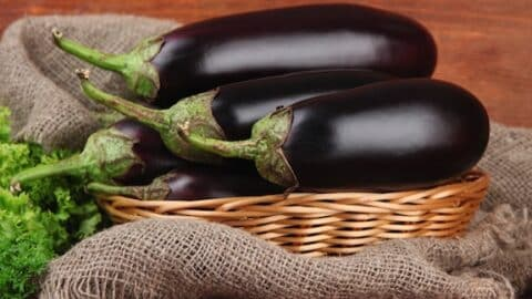 Eggplants in a basket2