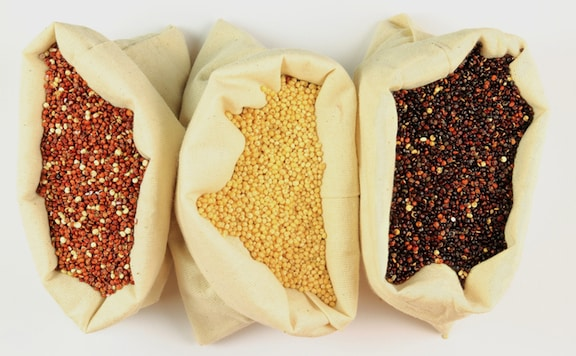 Quinoa varieties - red, tan, and black
