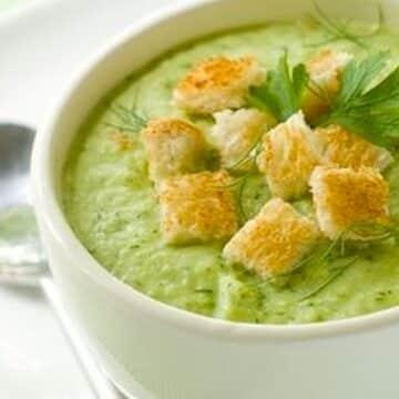 Zucchini chowder