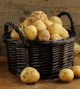 Golden potatoes in basket