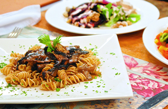 Savory Mushroom Stroganoff recipe