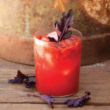 Watermelon Goji Living Juice from Julie Morris