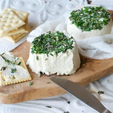 Vegan Herbed Garlic Cheez by Ann Oliverio