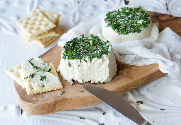 Vegan Herbed Garlic Cheez by Ann Oliverio