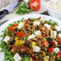 "Greek Flavored Lentil Salad with Tofu ""Feta"""