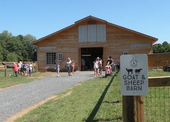 Goat and sheep barn at Woodstock Farm Animal Sanctuary