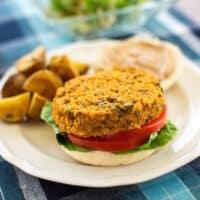 Quinoa and red lentil burger