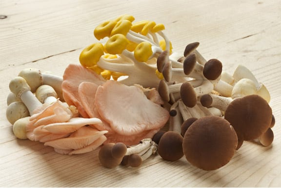 mushrooms provide vitamin-D