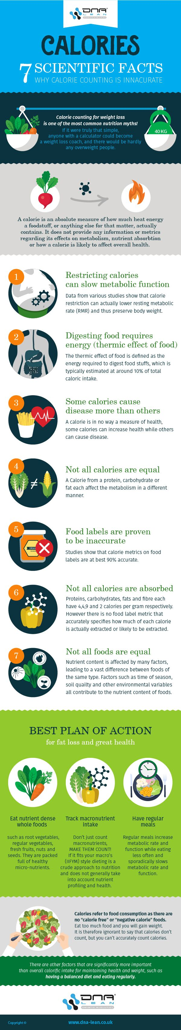 Calorie infographic