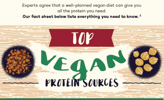 A Vegan Protein Sources Chart