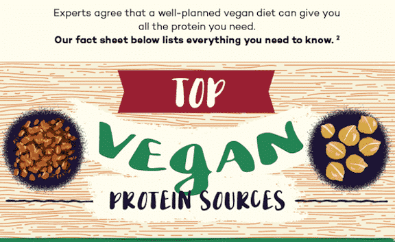 A vegan's guide to protein
