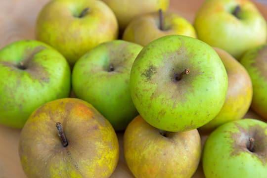 Imperfect organic apples
